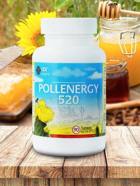 Manfaat Pollenergy 520